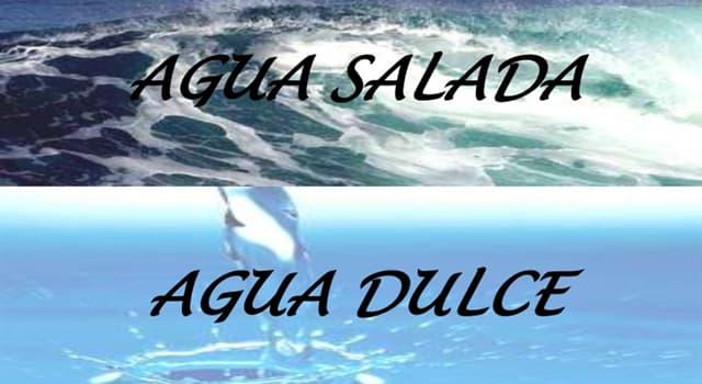 Сiencia Pregunta Trivia: ¿Por qué el mar es salado?