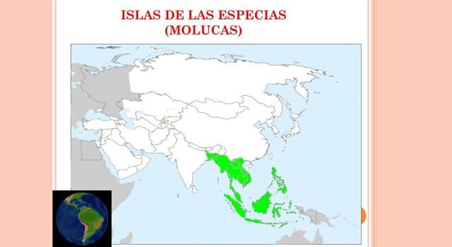 Naturaleza Pregunta Trivia: ¿Qué árbol es originario de las Islas de las Especias, en la actualidad Islas Molucas en Indonesia?