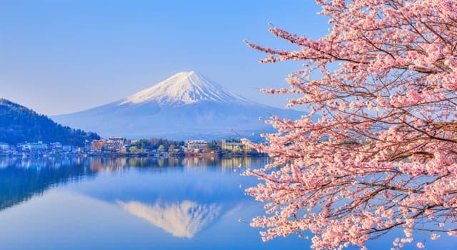 Cultura Pregunta Trivia: ¿Qué ave es el símbolo de la paz en Japón?