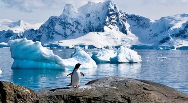 Geografía Pregunta Trivia: ¿Qué continente es el más cercano a la Antártida?