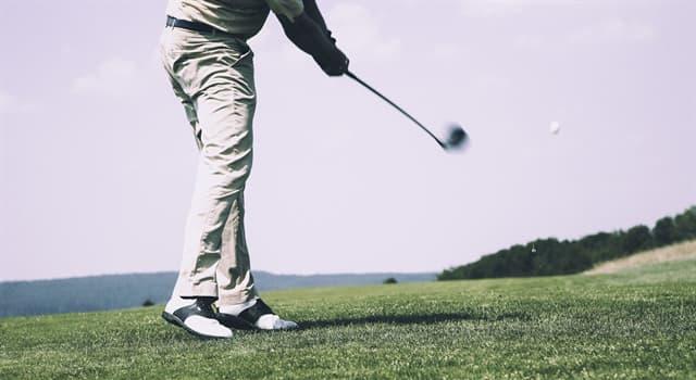 Deporte Pregunta Trivia: ¿Qué instrumento deportivo tiene tipos llamados maderas, hierros e híbridos?