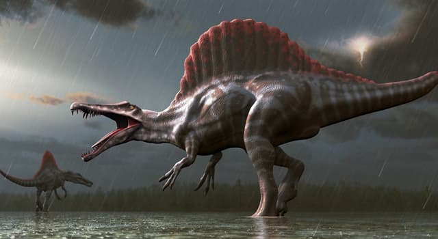 """Naturaleza Pregunta Trivia: ¿El nombre de qué dinosaurio significa """"ladrón veloz""""?"""