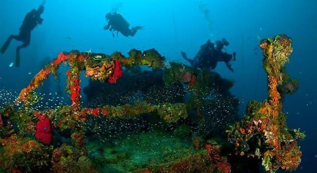 Historia Pregunta Trivia: ¿Cómo se llamaba el barco de Greenpeace que fue bombardeado y hundido en 1985?
