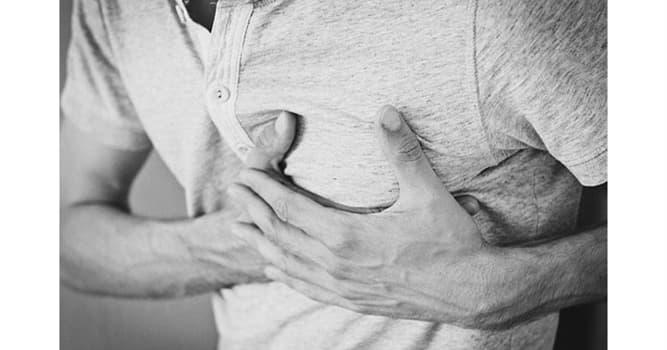 Сiencia Pregunta Trivia: ¿Cuál de las siguientes dolencias se suele confundir con un infarto de miocardio?