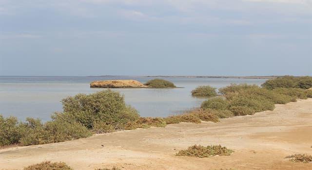 Geografía Pregunta Trivia: ¿Dónde está ubicado el Parque Nacional Wadi El Gamal?