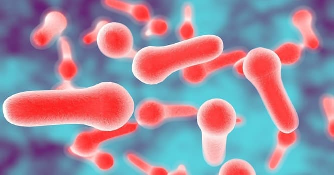 Science Trivia Question: From the name of which product did the disease botulism get its name?