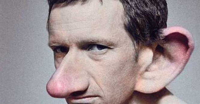 Naturaleza Pregunta Trivia: ¿Por qué la nariz y las orejas crecen durante toda la vida?