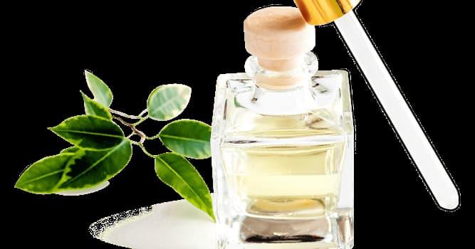 Сiencia Pregunta Trivia: ¿Qué ácido le proporciona el sabor y olor agrio al vinagre?