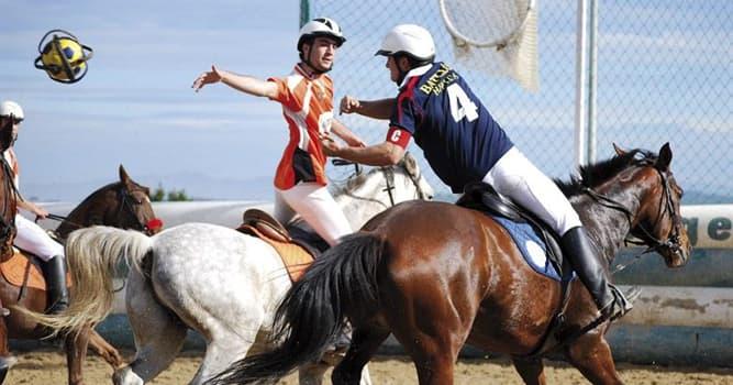 Deporte Pregunta Trivia: ¿Cómo se llama el deporte ecuestre que consiste en una mezcla de baloncesto, rugby y polo?