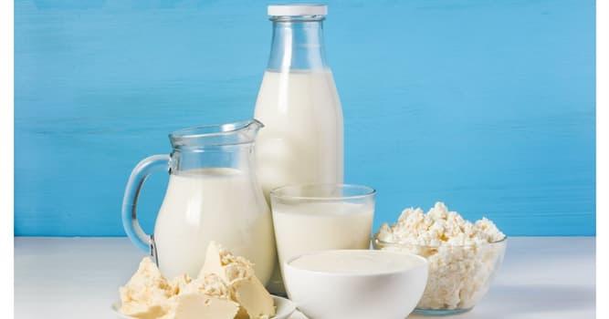 Cultura Pregunta Trivia: ¿En cuál de estos países la leche se ignoró durante siglos?