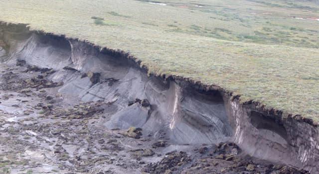 Naturaleza Pregunta Trivia: ¿Qué es el permafrost?