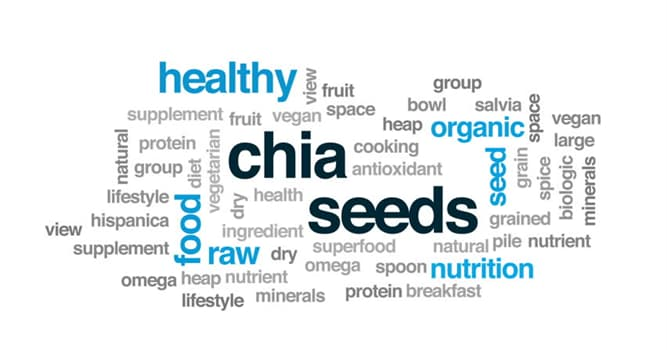 Natur Wissensfrage: Welche der folgenden Früchte enthält etwa 840 Samen?