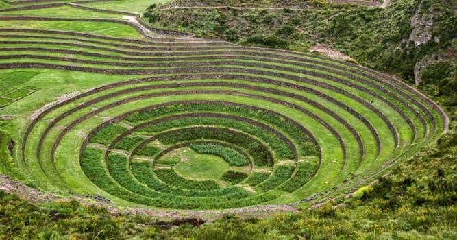 Historia Pregunta Trivia: ¿Cómo utilizaron los incas los andenes de Moray según los expertos?