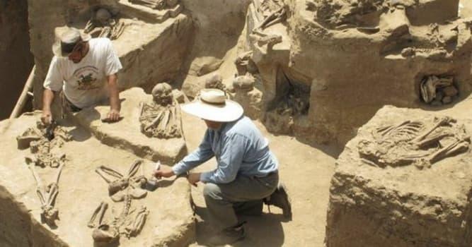 Películas Pregunta Trivia: ¿Cuál de estos personajes era profesor de arqueología?