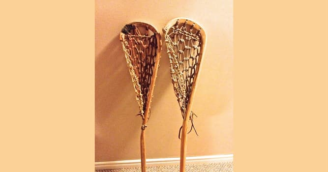 Sport Trivia Question: What is the name of the gear for playing lacrosse depicted in the image?