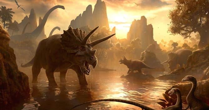 Natur Wissensfrage: Welcher ist der kleinste bekannte Dinosaurier?