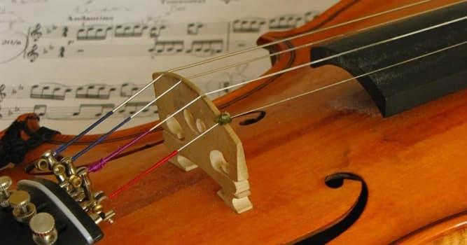 Kultur Wissensfrage: Welches der folgenden Streichinstrumente ist das größte?