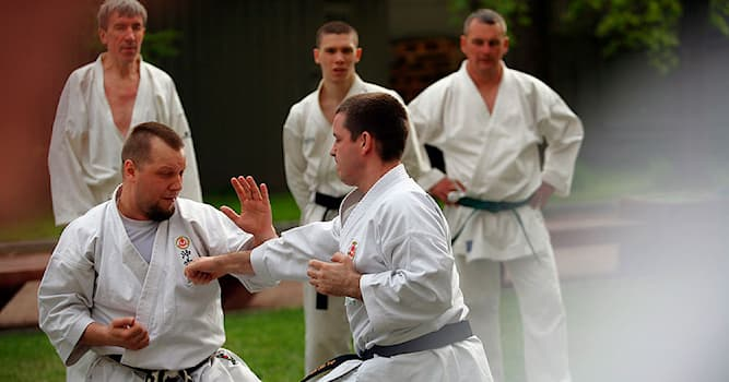 Sport Trivia Question: Which of the following is a modern Japanese martial art?