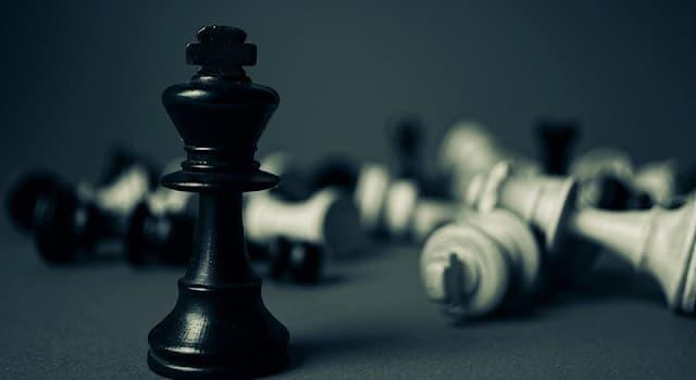 Спорт Вопрос: Где в 1927 году была проведена первая Шахматная олимпиада?
