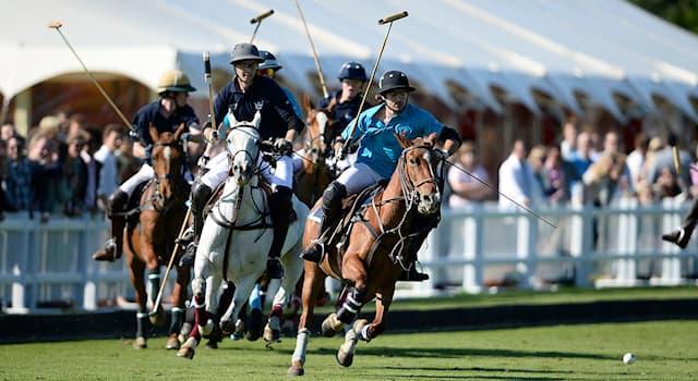 Спорт Вопрос: Из какого количества игроков состоит одна команда по конному поло на открытом воздухе?