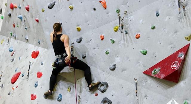 Спорт Вопрос: Как называется искусственное сооружение для скалолазания?