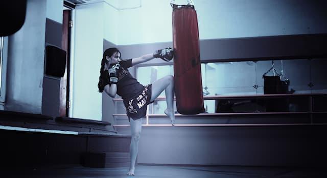 Спорт Вопрос: Как называется кожаный снаряд для совершенствования ударов бокса?