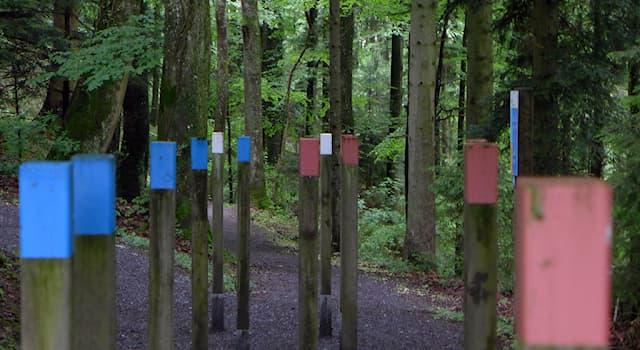 Спорт Вопрос: Как называется публично доступная расположенная в лесу оздоровительная тропа, популярная в Швейцарии?