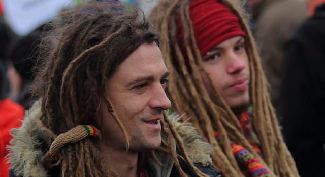 Общество Вопрос: Как называют спутанные в локоны волосы, которые образуются естественным или искусственным путём?
