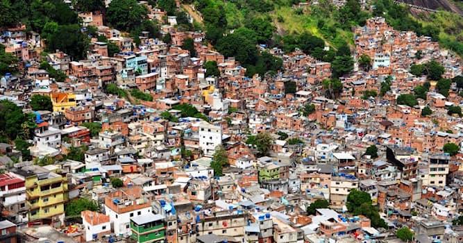 Общество Вопрос: Какая из фавел (трущоб) Рио-де-Жанейро — крупнейшая в Бразилии?
