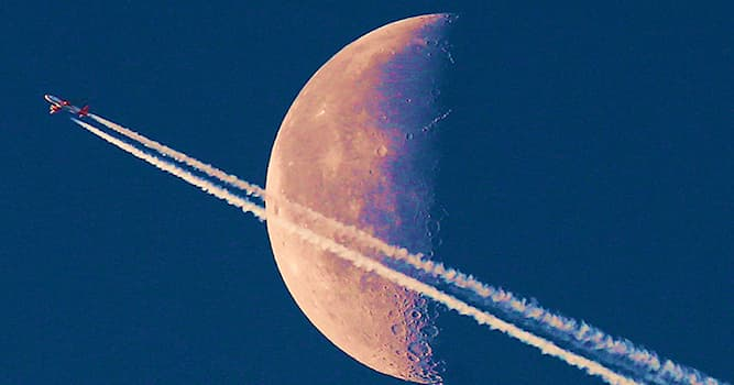 History Trivia Question: Which terrestrial organisms were the first to fly around the moon in 1968?