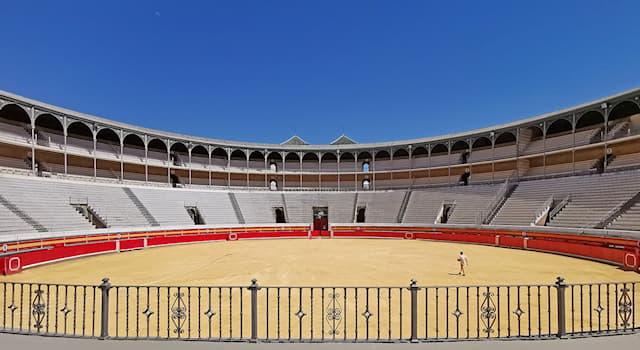 """Спорт Вопрос: Название какого спортивного сооружения произошло от латинского слова """"песок""""?"""