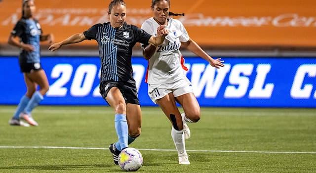 Спорт Вопрос: С какого года проводится чемпионат мира по футболу среди женщин?