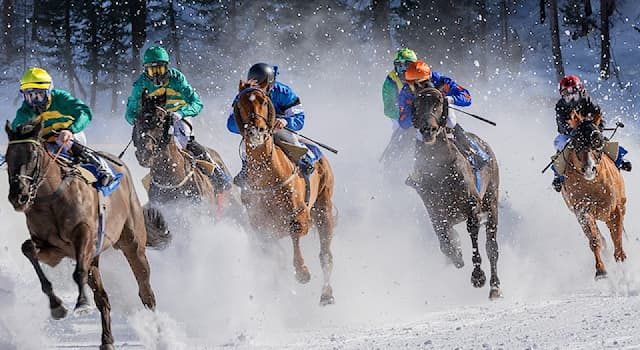 Sport Trivia Question: Which animal racing is popular in Western Asia and North Africa?