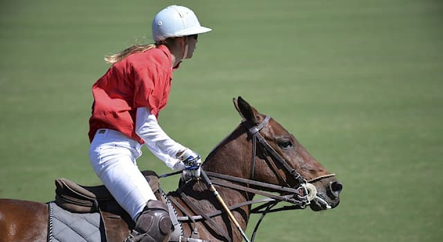 Спорт Вопрос: Какова продолжительность матча по конному поло на открытом воздухе?
