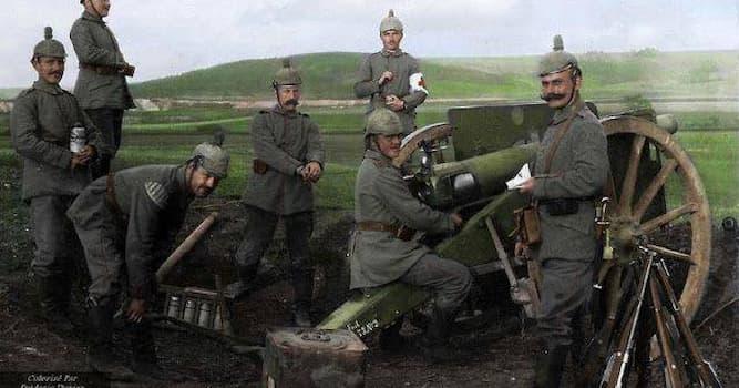 История Вопрос: Сколько стран участвовало в первой мировой войне?