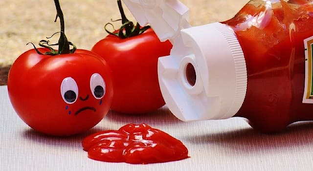 """History Trivia Question: In which country was the food processing company """"Heinz"""" founded in 1869?"""