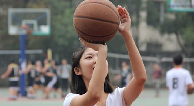 Спорт Вопрос: В каком году женский баскетбол был впервые включён в программу Олимпийских игр?