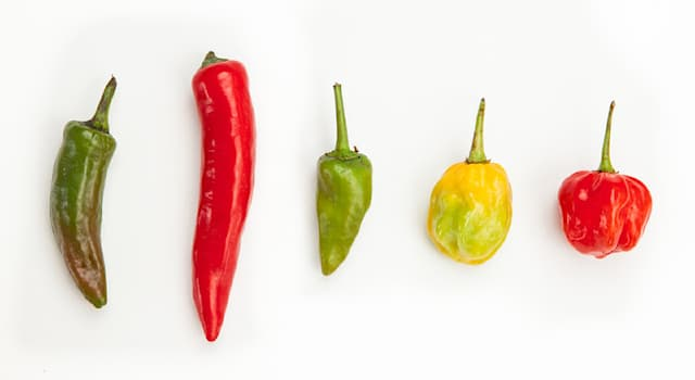 Culture Trivia Question: As of 2021, what is the hottest pepper in the world that could also kill you?