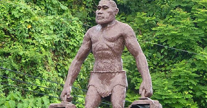 География Вопрос: Что держат в руках статуи неандертальцев в городе Краби в Таиланде?