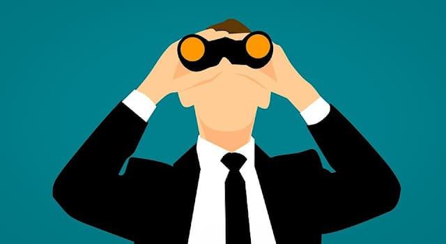 Общество Вопрос: Что или кого ищет Интерпол?