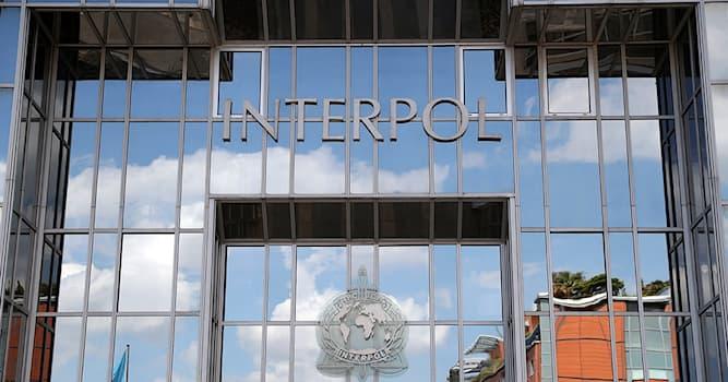 Общество Вопрос: Что или кто из перечисленного является высшим руководящим органом Интерпола?
