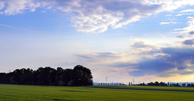 География Вопрос: Что такое горизонт?