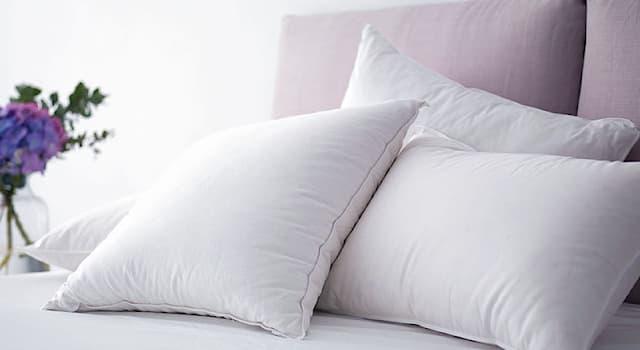 История Вопрос: Из чего делали первые подушки?