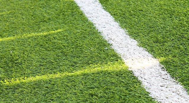 Спорт Вопрос: Из скольких игроков состоит команда в мини-футболе?