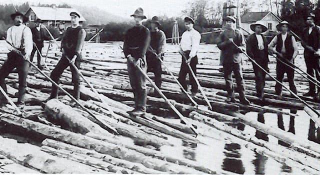 Общество Вопрос: Как называется работник, занимающийся перегонкой плотов по рекам?