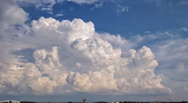 География Вопрос: Какая из стран мира с местного диалекта переводится как «Cтрана Длинного Белого Облака»?