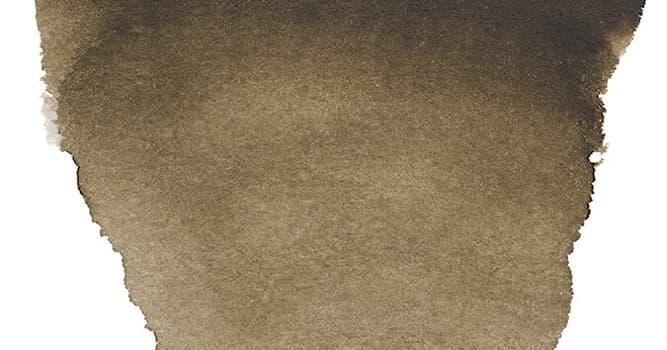 Природа Вопрос: Какие животные используются для изготовления натуральной краски сепия?