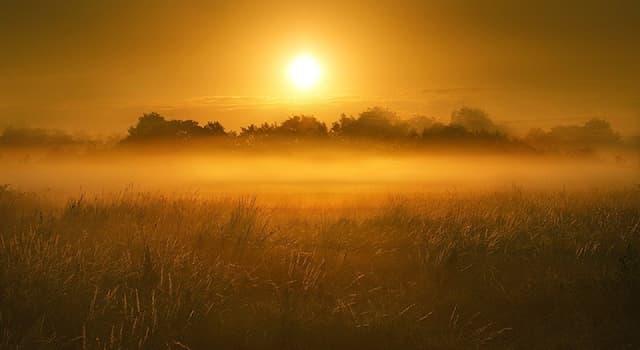 Наука Вопрос: Какое полезное ископаемое добывают на болоте?