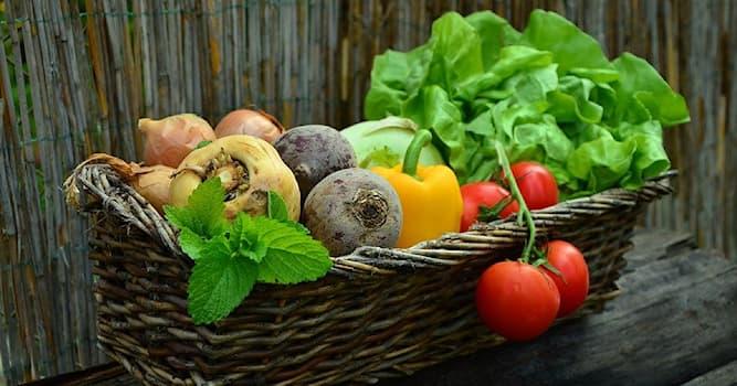 Природа Вопрос: Какой овощ с 16 по 19 вв. в некоторых странах Европы считался ядовитым и не употреблялся в пищу?