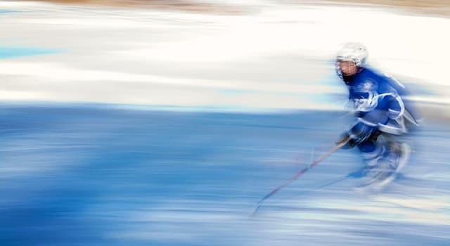 """Спорт Вопрос: Какой вид спорта является центральной темой канадской драмы 2012 года """"Короли льда""""?"""